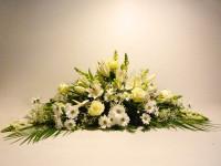 Palma de tonos blancos sobre ramaje verde