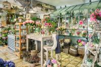 Interior de la Tienda de Flores. Fotografía de Orlando Gutiérrez